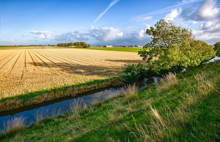 agricultura campos rio água