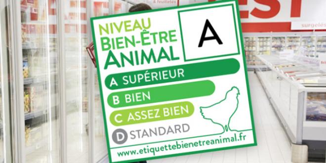 etichetta benessere animale casino francia