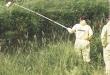 greenpeace antibiotici pesticidi allevamento agricoltura campionamento