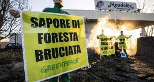 greenpeace mondelez olio di palma deforestazione