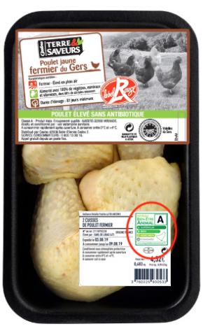 pollo casino etichetta benessere animale