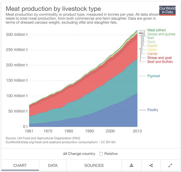 produzione carne tipo