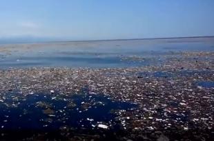 plastica inquinamento mare