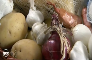 aglio patate cipolle conservare geo Paparella