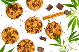 Chocolate chip cookies with marijuana isolated on white