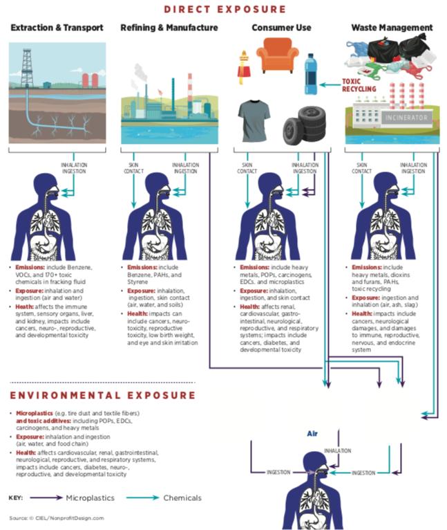 esposizione umana inquinamento plastica