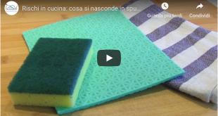 spugne strofinacci igiene cucina istituto zooprofilattico venezie