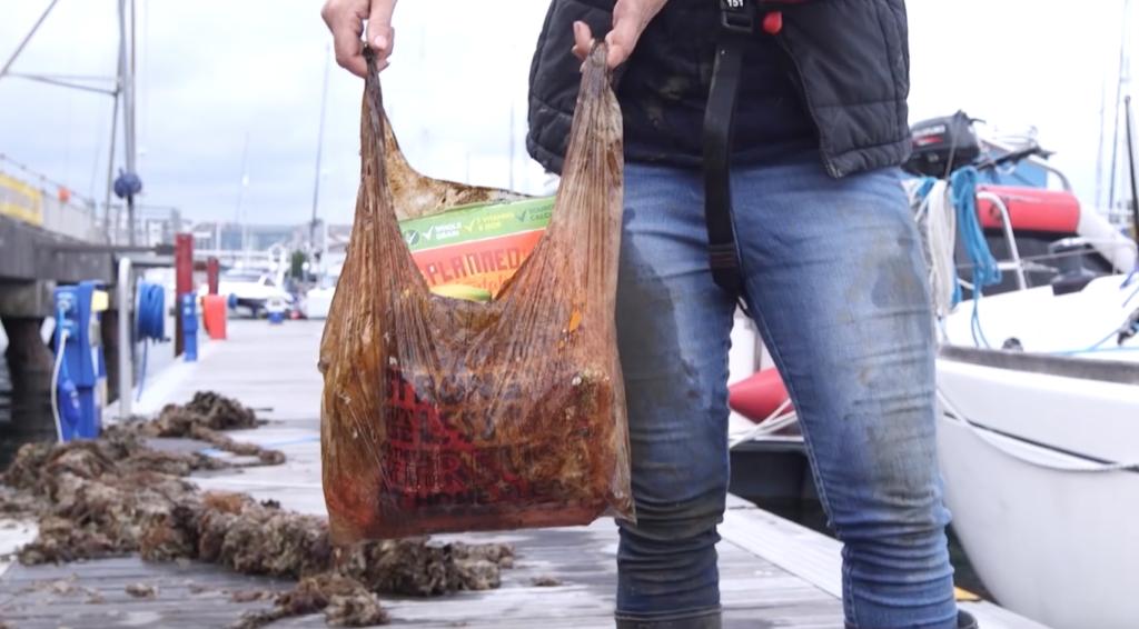 sacchetti buste bioegradabili esperimento università plymouth plastica