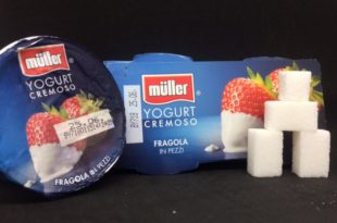 Yogurt muller zollette