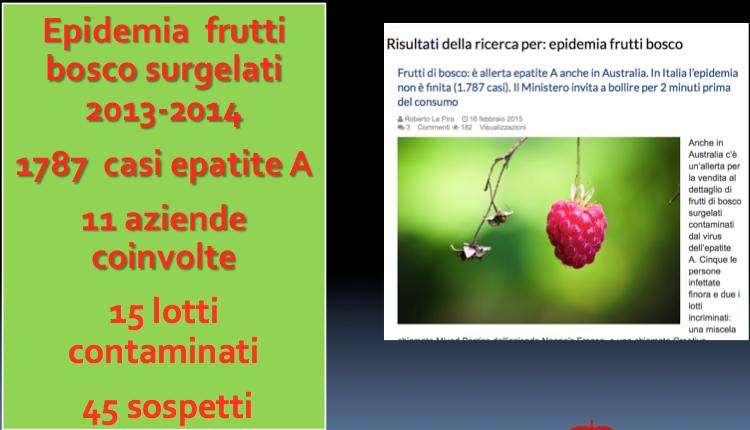 allerta frutti di bosco