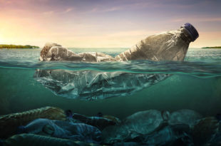 bottiglie plastica mare inquinamento