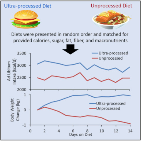 cibo ultra-processato studio cell metabolism