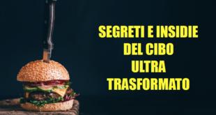 segreti e insidie del cibo ultra-trasformato dettaglio copertina