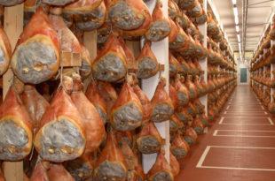 prosciutto carne di maiale
