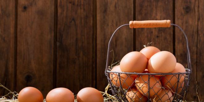 Uova: come orientarsi tra tipo di allevamento, certificazioni, sostenibilità ambientale e benessere animale