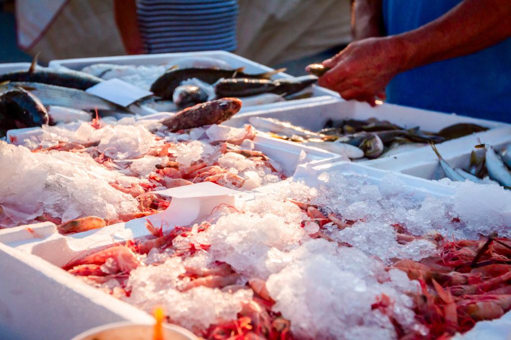 casse polistirolo mercato pesce ghiaccio