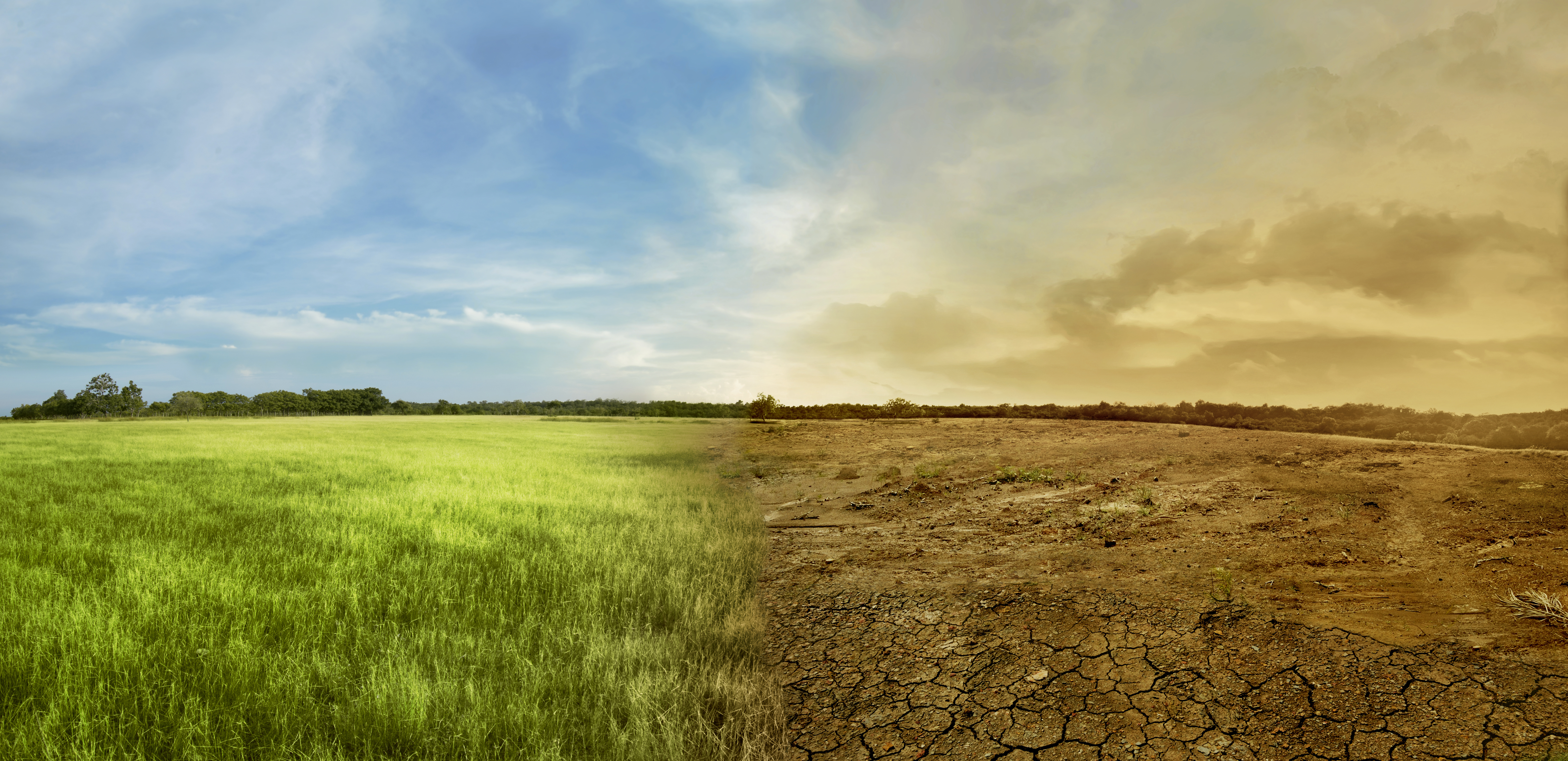 climate change cielo erba terra bruciata