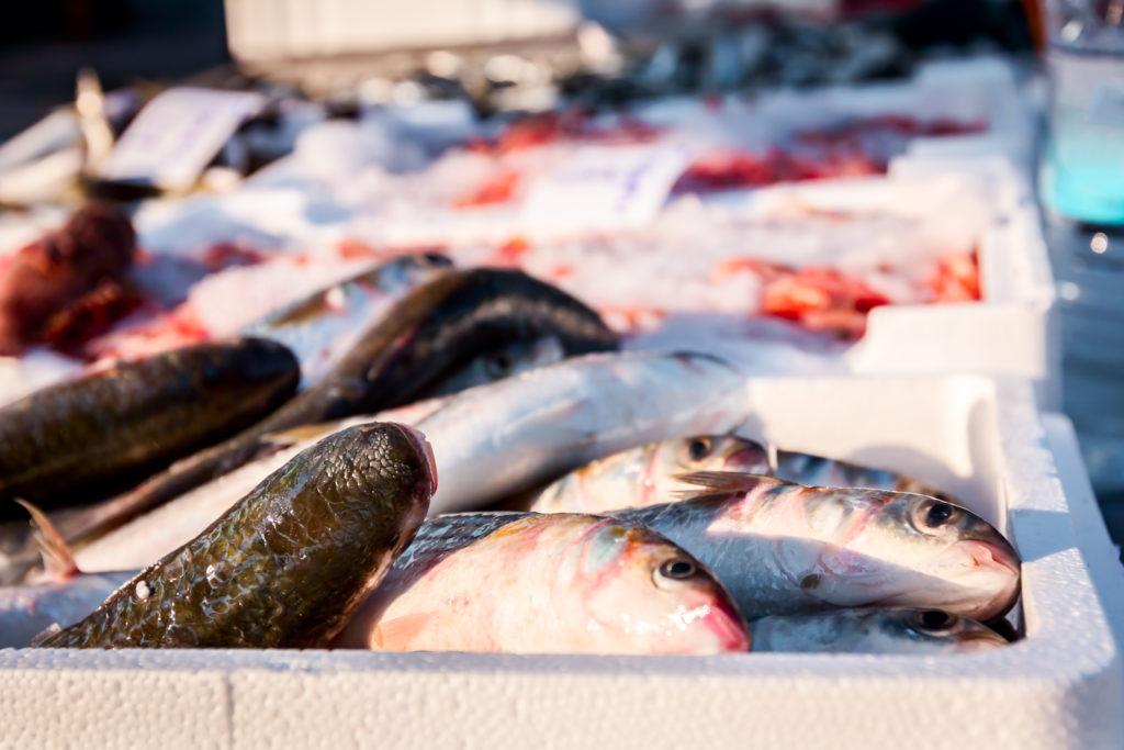 pesce ghiaccio casse polistirolo