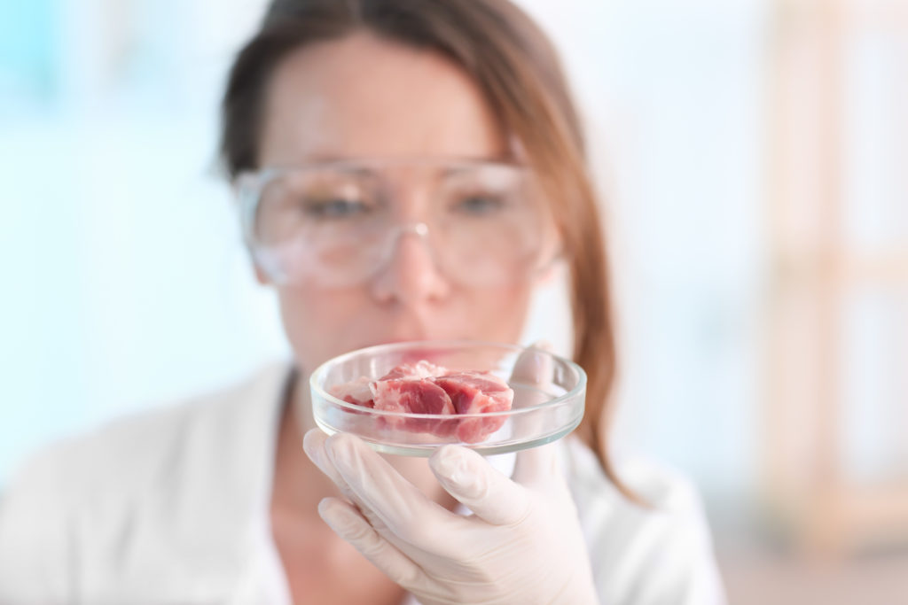 Scientist holding Petri dish with meat sample in laboratory