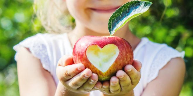 Dalle mense bio alle fattorie aperte, l'educazione alimentare in Emilia-Romagna mette al centro biologico e agricoltura