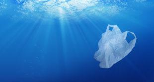 sacchetto plastica mare