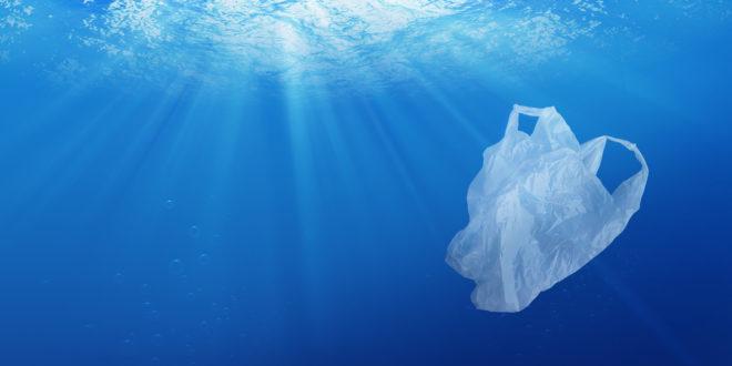 Novamont: la scienza conferma biodegradabilità del Mater-Bi. Ma no a comportamenti irresponsabili