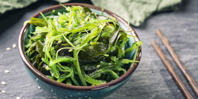 alghe iodio mare