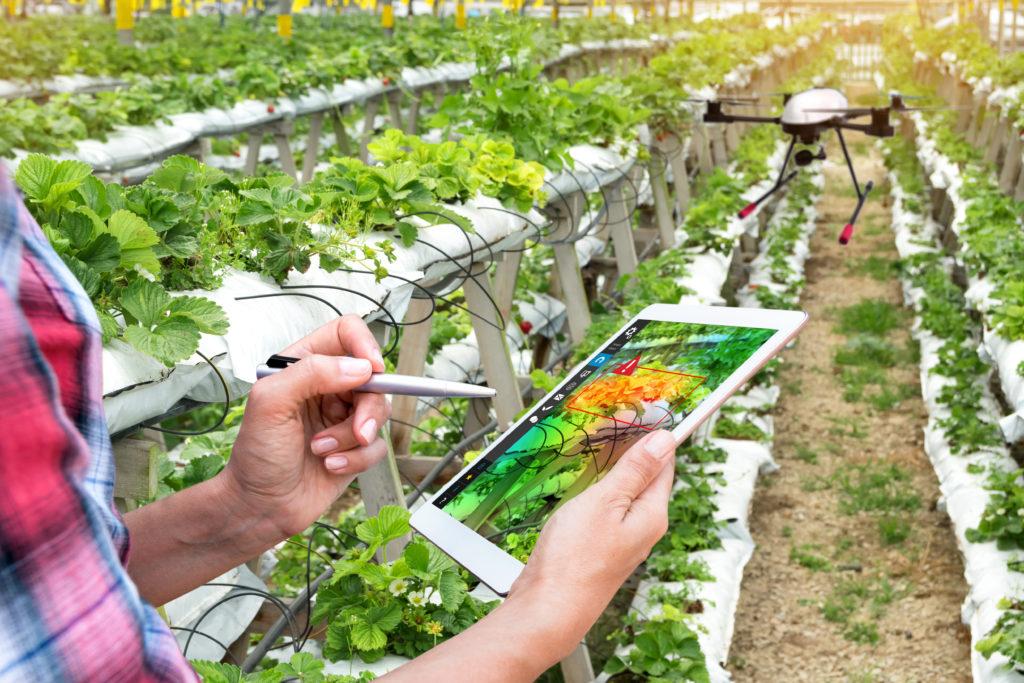 agricoltura di precisione tablet Green deal