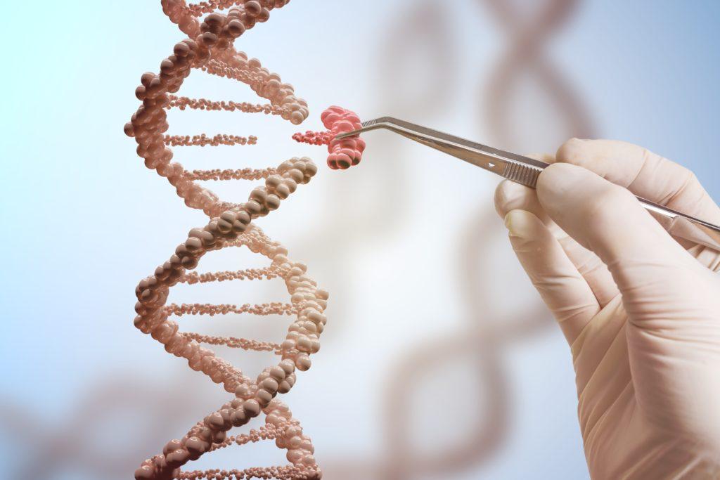 editing genetico crispr ogm