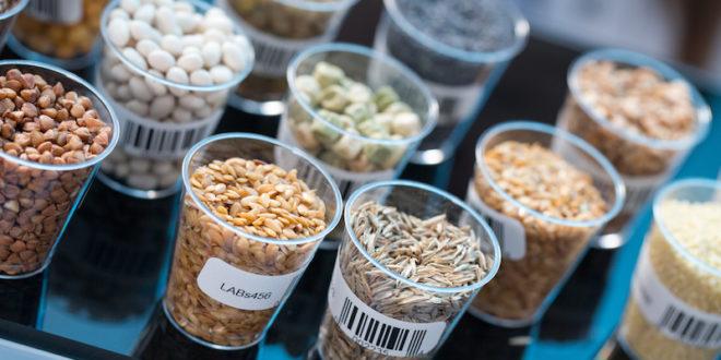 semi cereali laboratorio analisi esami