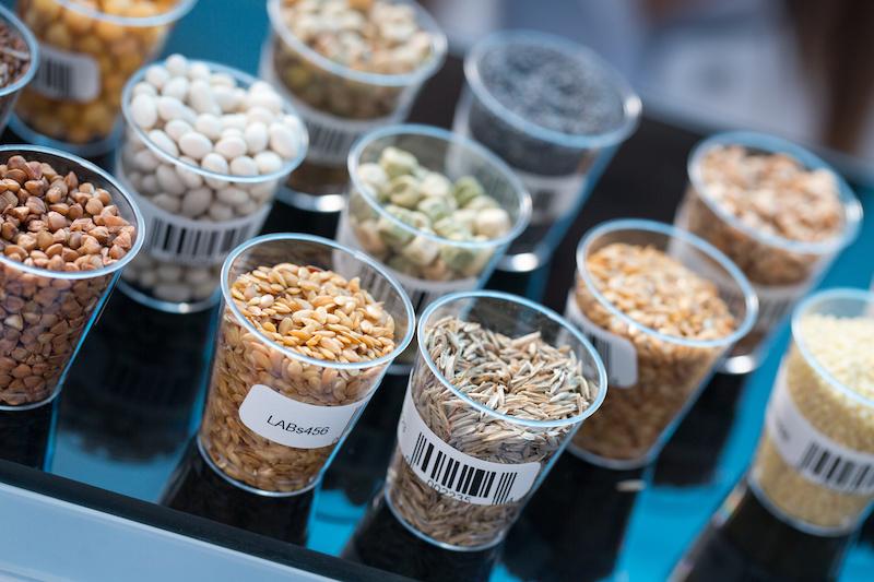 semi cereali laboratorio analisi esami Comitato nazionale per la sicurezza alimentare
