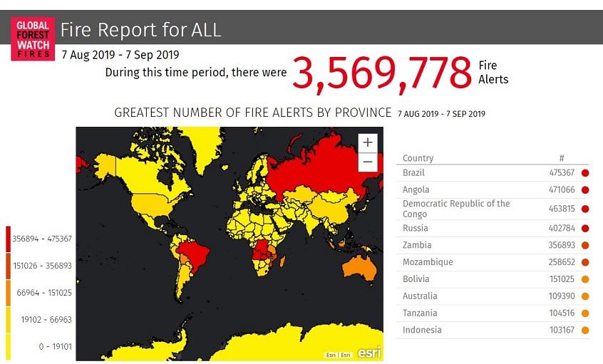 MAPPA-maggior-numero-di-incendi-per-Paese-7-agosto-7-settembe-2019-fonte-Global-Forest-Watch