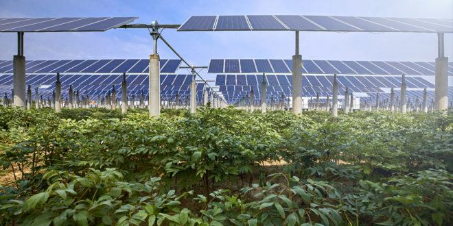 Green Deal ecco cosa prevede il progetto europeo della Commissione, in un articolo di Food Hub