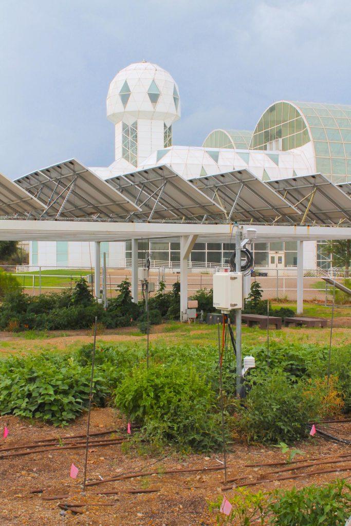 agrivoltaico biosfera 2 coltivazioni pannelli solari