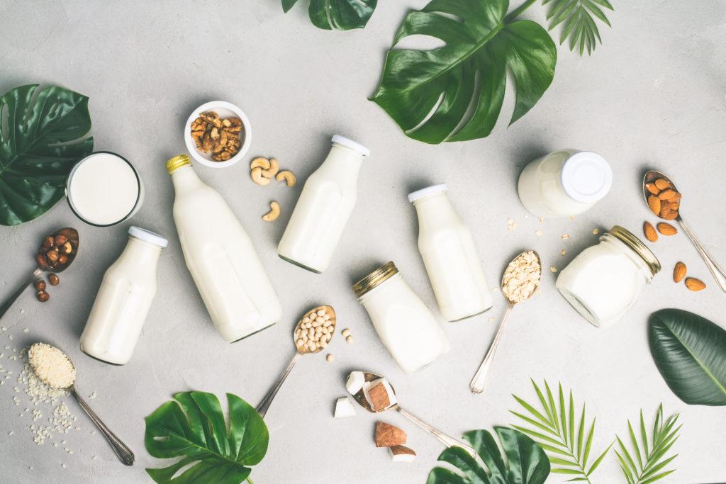 Dairy free milk substitute drinks and ingredients bevande vegetali