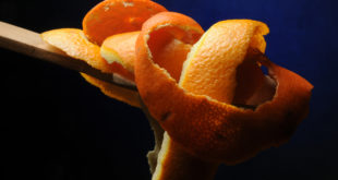 Citrus sinensis Appelsin Arance Naranjo Πορτοκαλιά Նարնջենի Buccia Orange ಕಿತ್ತಳೆ Portakal Arancia peel Portocal Pomarańcza chińska