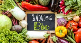 verdura biologica biologico
