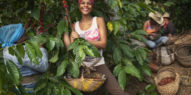 Lavazza cuba caffe agricoltrici donne emancipazione