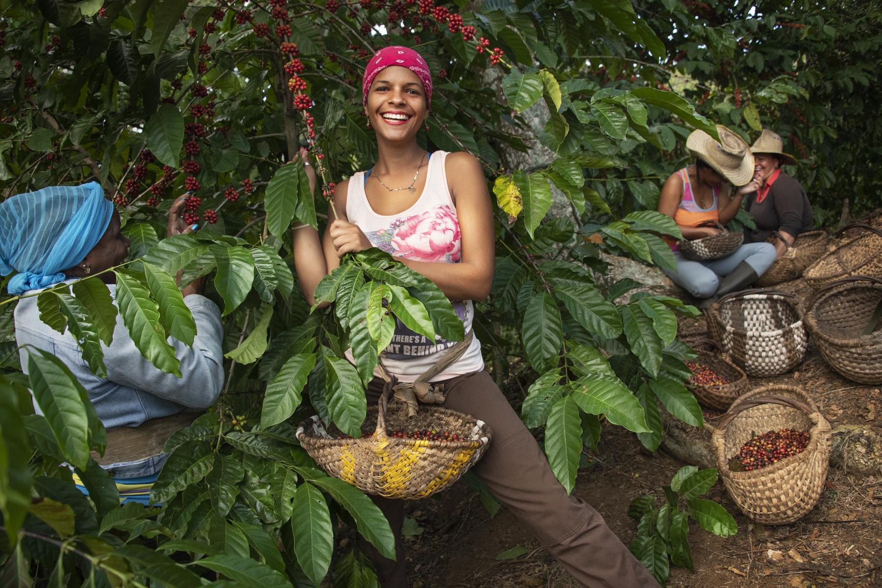 Lavazza, a Cuba promuove lo sviluppo sostenibile attraverso il caffè