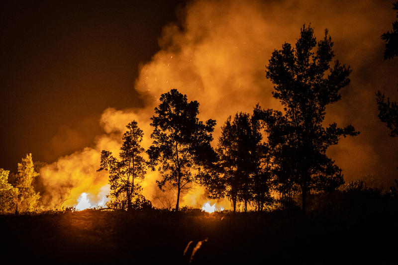 Forest Fires in Jekan Raya, Central Kalimantan