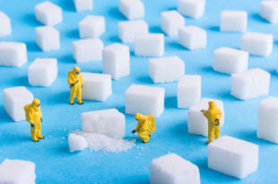 The team investigates the sugar cubes