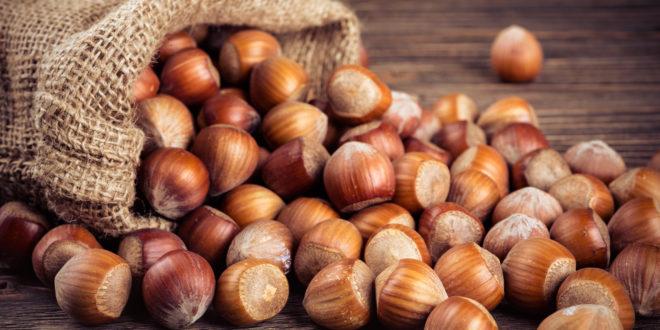 Ferrero, le nocciole turche e il lavoro minorile: continua la polemica sulle accuse di sfruttamento. Ma l'Italia ignora la notizia