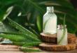 Aloe vera: bevande o integratori? Analisi dei prodotti più diffusi sul mercato