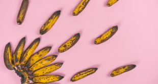 bunch of overripe spoiled mini-bananas on a pale pink background.