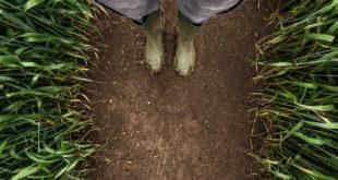 agricoltura campi terra lavoro contadini sfruttamento caporalato immigrati