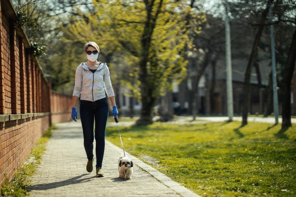 coronavirus cane passeggiata guanti mascherina