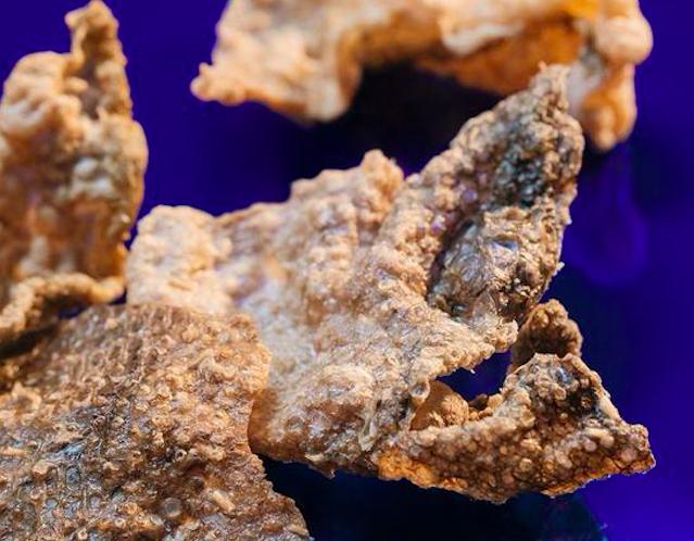 chips pelle salmone goodfish
