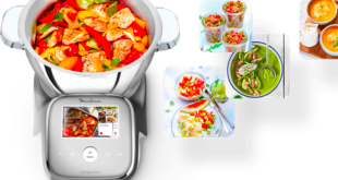moulinex i-companion touch xl ricette