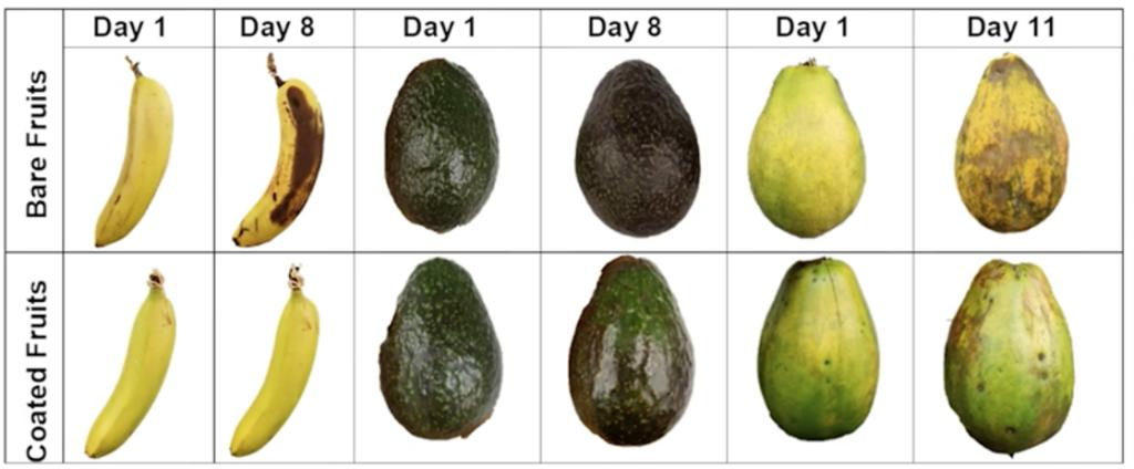 Ovos descartados para criar uma película protetora para frutas e legumes 7