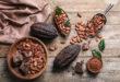 Cresce il lavoro minorile nelle piantagioni di cacao della Costa d'Avorio durante il lockdown. La scoperta dell'International Cocoa Initiative